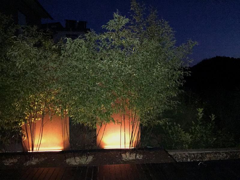 Gartenbeleuchtung Mit Wallwasher